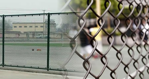 Plastic Mesh And Coated Steel Mesh Chain Link Sports Fence